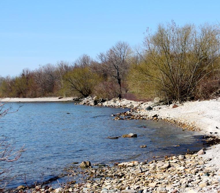 Scheeff East Point Preserve