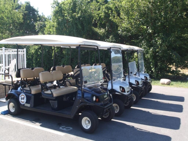 Put-in-Bay Condos 6-Person Golf Cart