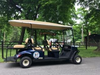 Put-in-Bay Island Club 6-Person Golf Cart