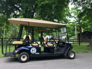 Island Club Golf Cart