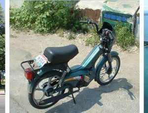 Moped Rentals