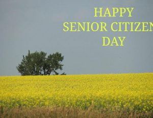 Put-in-Bay Senior Citizens Day